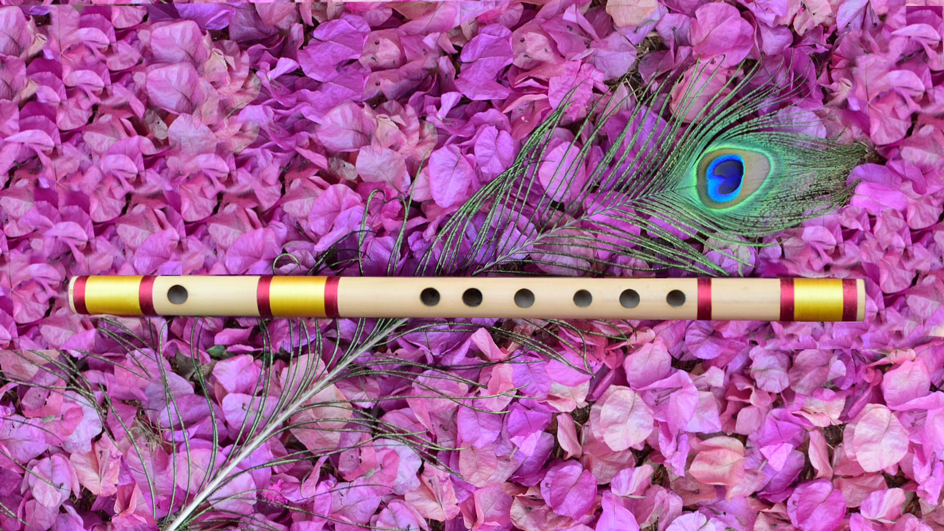 Beginners Guide To Learning Indian Bamboo Flute Shashankgiri
